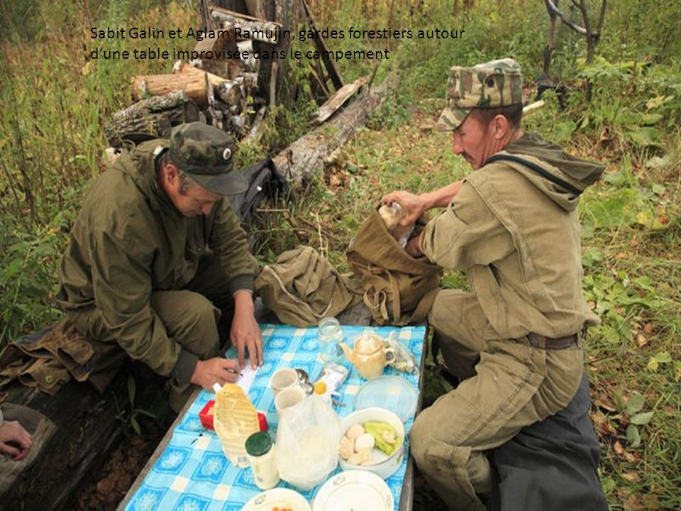Sabit Galin et Aglam Ramujin, gardes forestiers, installent le campement pendant la récolte du miel. Au gré des précipitations de septembre, les tempé