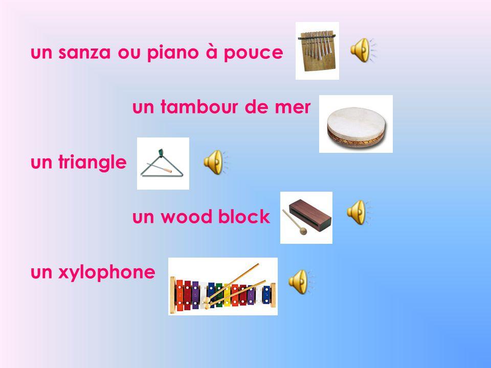 un sanza ou piano à pouce un tambour de mer un triangle un wood block un xylophone