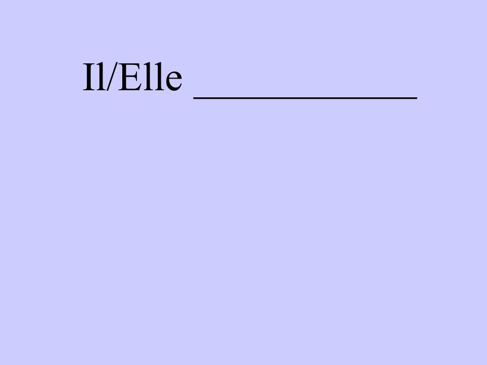 Il/Elle ___________