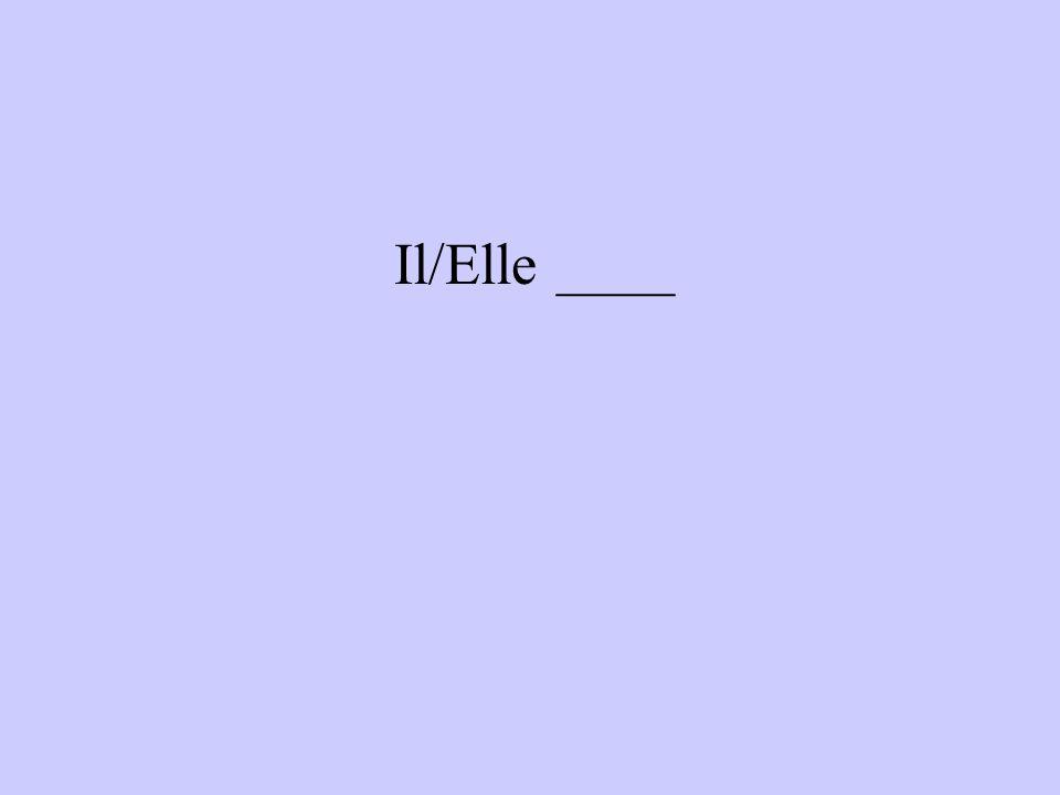 Il/Elle ____