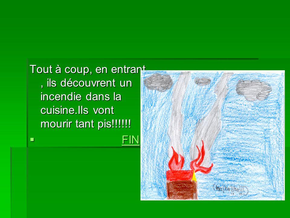 Tout à coup, en entrant, ils découvrent un incendie dans la cuisine.Ils vont mourir tant pis!!!!!! FIN FINFIN