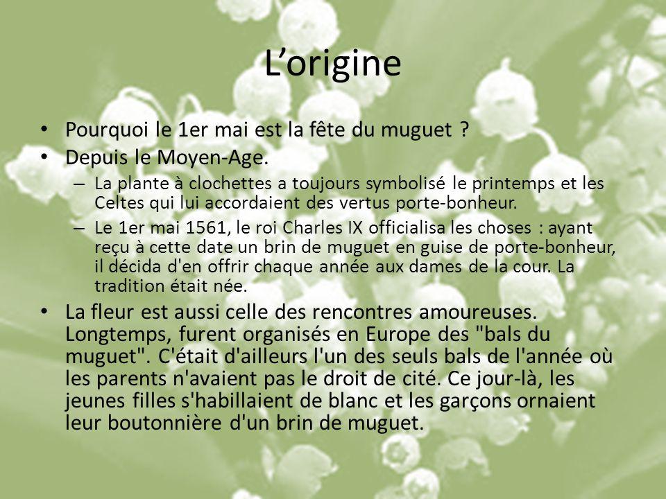 Lorigine Pourquoi le 1er mai est la fête du muguet ? Depuis le Moyen-Age. – La plante à clochettes a toujours symbolisé le printemps et les Celtes qui