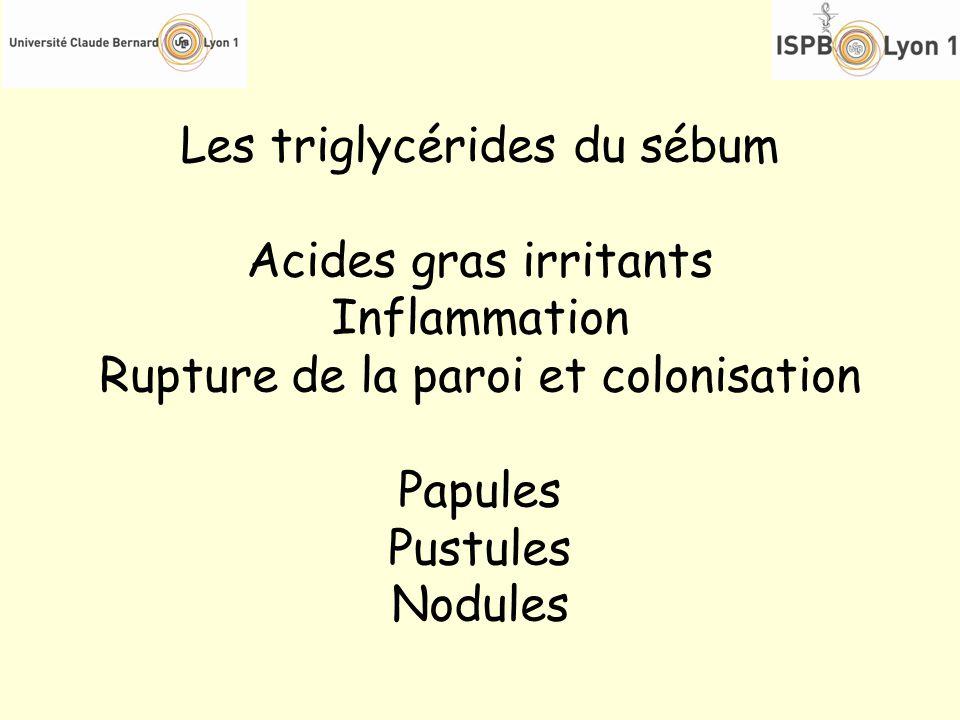 Les triglycérides du sébum Acides gras irritants Inflammation Rupture de la paroi et colonisation Papules Pustules Nodules