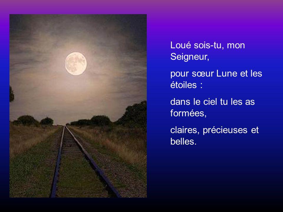 Loué sois-tu, mon Seigneur, pour sœur Lune et les étoiles : dans le ciel tu les as formées, claires, précieuses et belles.
