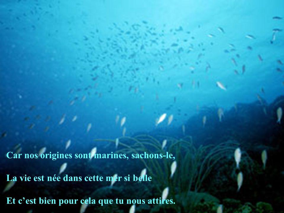 Car nos origines sont marines, sachons-le, La vie est née dans cette mer si belle Et cest bien pour cela que tu nous attires.
