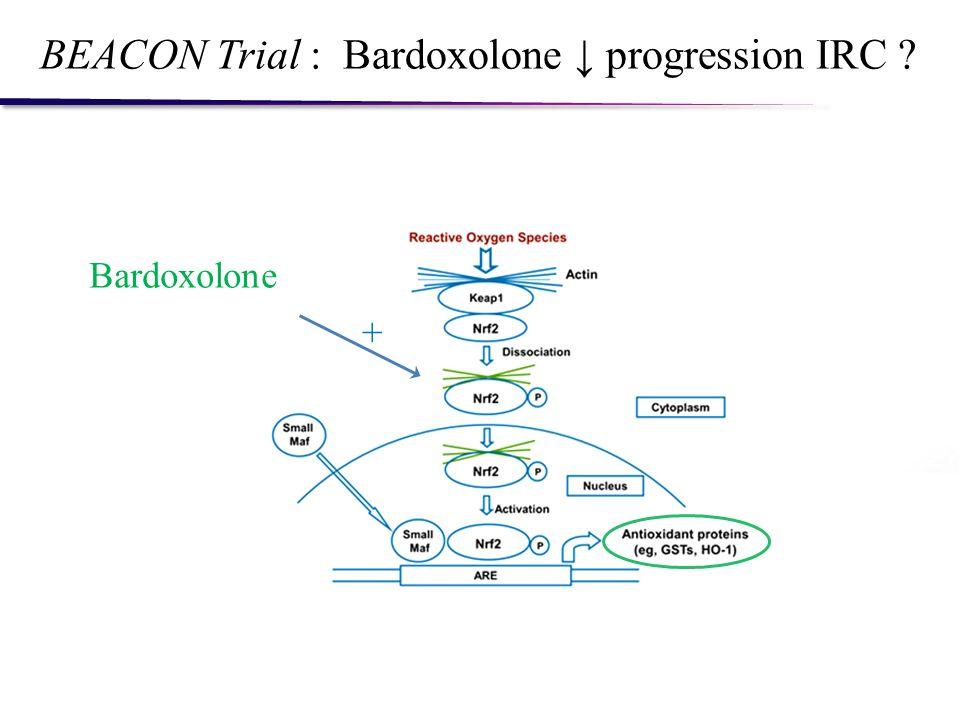 BEACON Trial : Bardoxolone progression IRC ? Bardoxolone +
