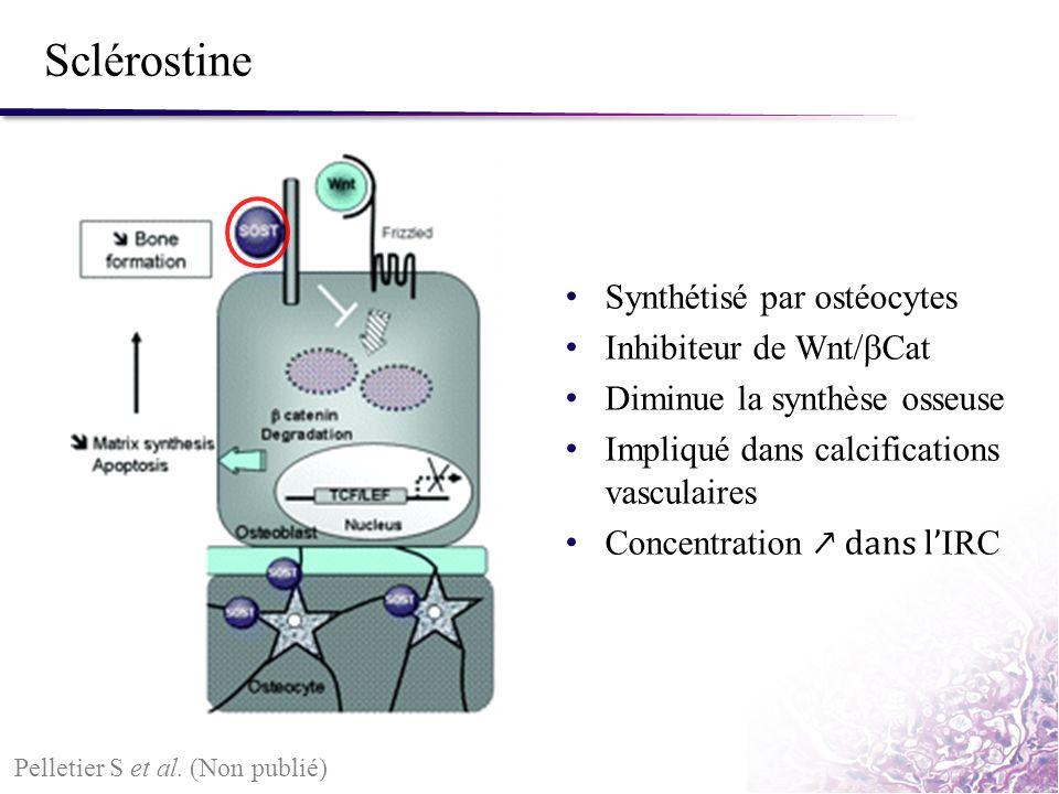 Sclérostine Pelletier S et al. (Non publié) Synthétisé par ostéocytes Inhibiteur de Wnt/ Cat Diminue la synthèse osseuse Impliqué dans calcifications