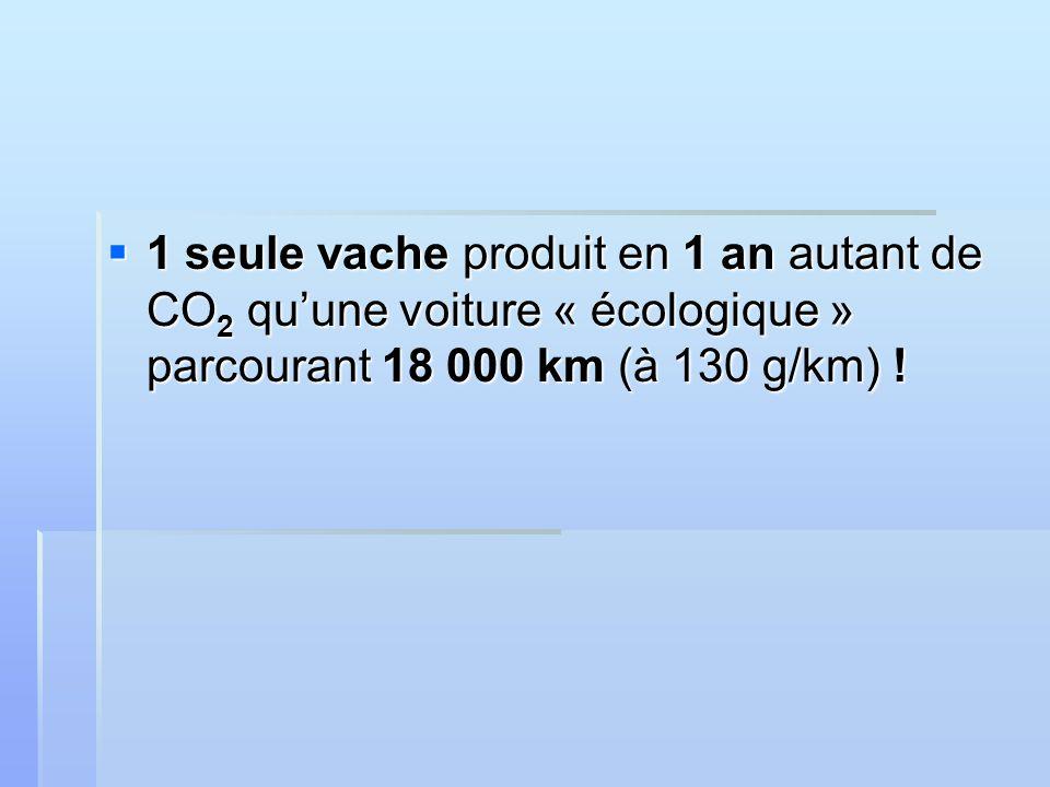 1 seule vache produit en 1 an autant de CO 2 quune voiture « écologique » parcourant 18 000 km (à 130 g/km) .