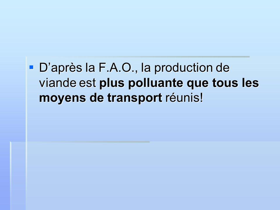 Daprès la F.A.O., la production de viande est plus polluante que tous les moyens de transport réunis.