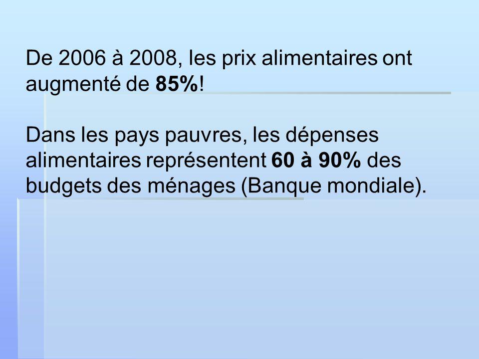 De 2006 à 2008, les prix alimentaires ont augmenté de 85%.