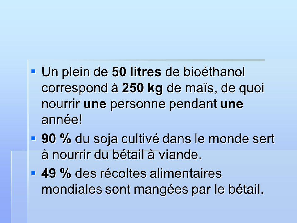 Un plein de 50 litres de bioéthanol correspond à 250 kg de maïs, de quoi nourrir une personne pendant une année.