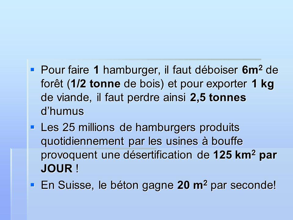 Pour faire 1 hamburger, il faut déboiser 6m 2 de forêt (1/2 tonne de bois) et pour exporter 1 kg de viande, il faut perdre ainsi 2,5 tonnes dhumus Pour faire 1 hamburger, il faut déboiser 6m 2 de forêt (1/2 tonne de bois) et pour exporter 1 kg de viande, il faut perdre ainsi 2,5 tonnes dhumus Les 25 millions de hamburgers produits quotidiennement par les usines à bouffe provoquent une désertification de 125 km 2 par JOUR .