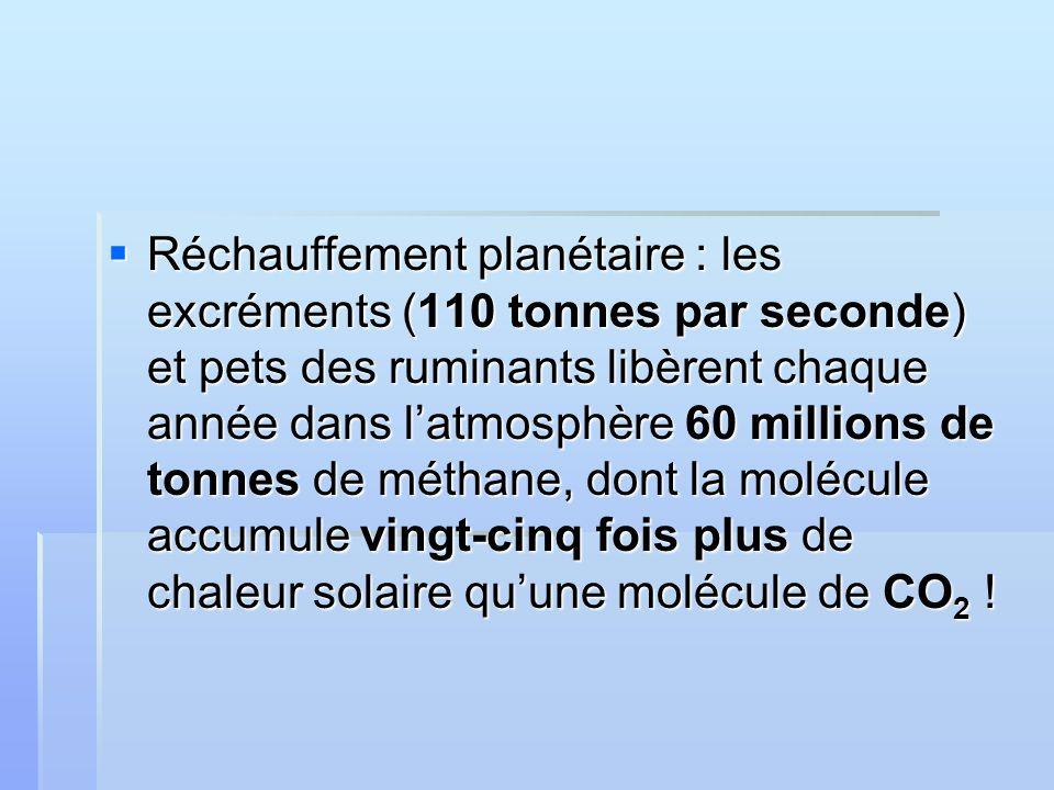 Réchauffement planétaire : les excréments (110 tonnes par seconde) et pets des ruminants libèrent chaque année dans latmosphère 60 millions de tonnes de méthane, dont la molécule accumule vingt-cinq fois plus de chaleur solaire quune molécule de CO 2 .