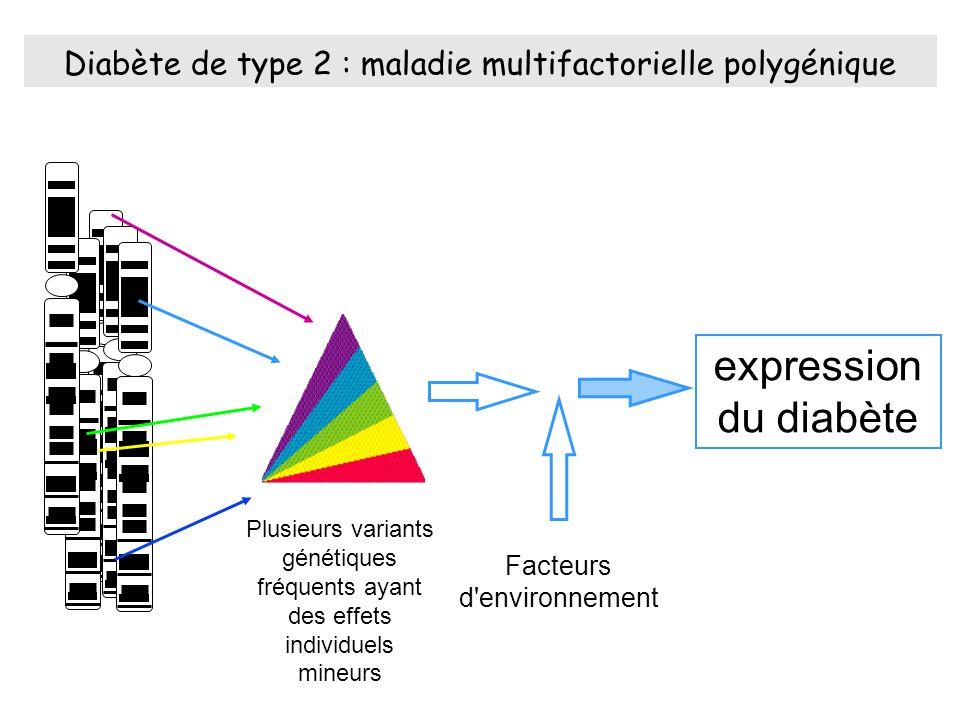Diabète de type 2 : maladie multifactorielle polygénique Plusieurs variants génétiques fréquents ayant des effets individuels mineurs expression du diabète Facteurs d environnement