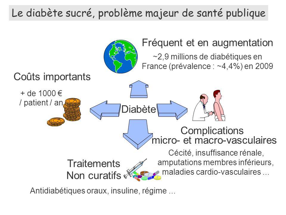 Diabète Le diabète sucré, problème majeur de santé publique Antidiabétiques oraux, insuline, régime...
