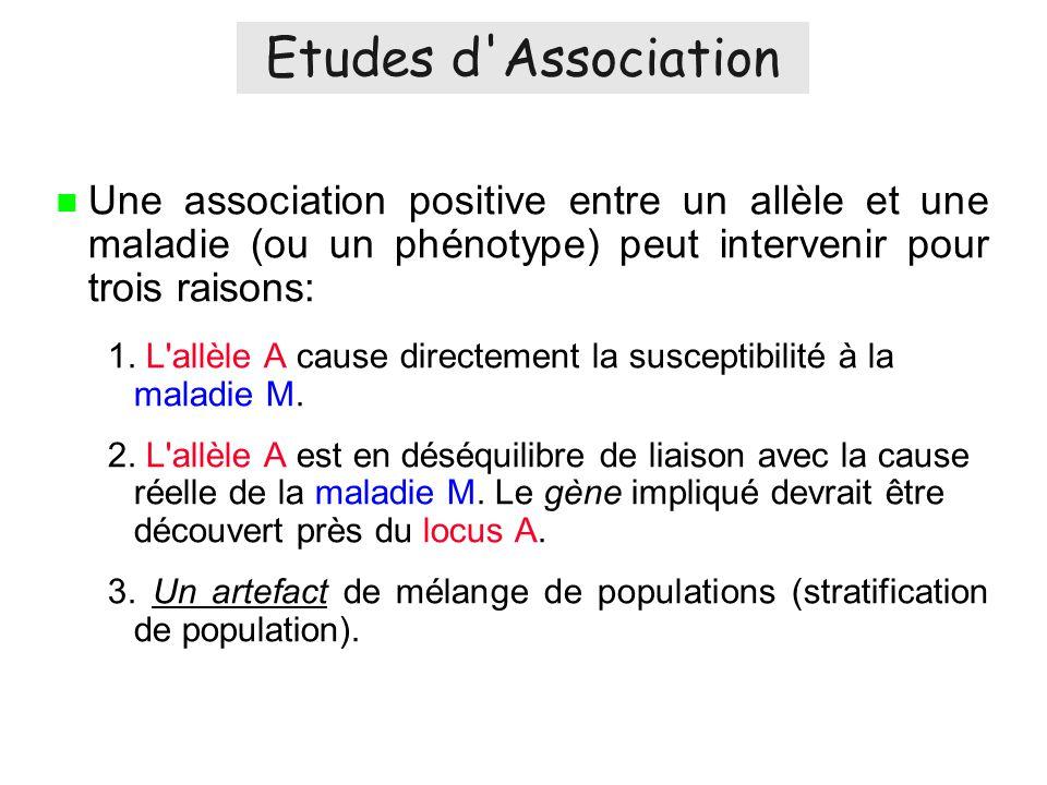 Une association positive entre un allèle et une maladie (ou un phénotype) peut intervenir pour trois raisons: 1.