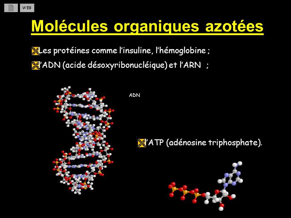 N O H O O Le nitrate dhydrogène (acide nitrique) Les REACTIONS chimiques DOXYDOREDUCTION qui conduisent au nitrate dhydrogène sont les suivantes : 6 NO (g) + 3 O 2 (g) 6 NO 2 (g) 6 NO 2 (g) + 3 H 2 O (l) 3 HNO 2 (l) + 3 HNO 3 (l) 3 HNO 2 (l) HNO 3 (l) + 2 NO (g) + H 2 O (l) Bilan : 4 NO (g) + 3 O 2 (g) + 2 H 2 O (l) 4 HNO 3 (l) WEB