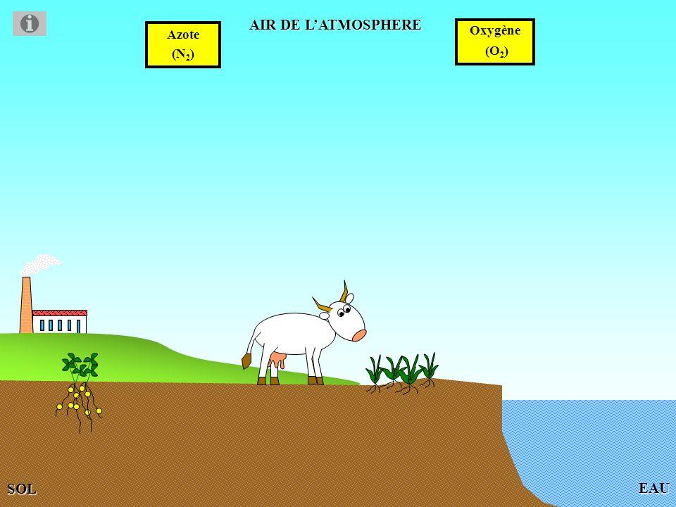Les orages Lors des orages, lazote et loxygène peuvent réagir grâce à la chaleur libérée par les éclairs ( 30 000°C).