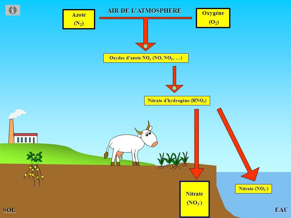 EAU AIR DE LATMOSPHERE Azote (N 2 ) Oxygène (O 2 ) Oxydes dazote NO x (NO, NO 2, …) SOL Nitrate (NO 3 - ) Nitrate (NO 3 - ) Nitrate d hydrogène (HNO 3 )