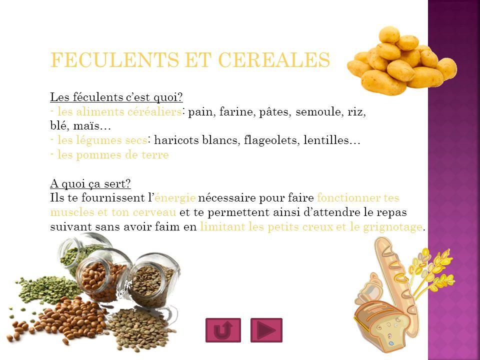FECULENTS ET CEREALES Les féculents cest quoi? - les aliments céréaliers: pain, farine, pâtes, semoule, riz, blé, maïs… - les légumes secs: haricots b
