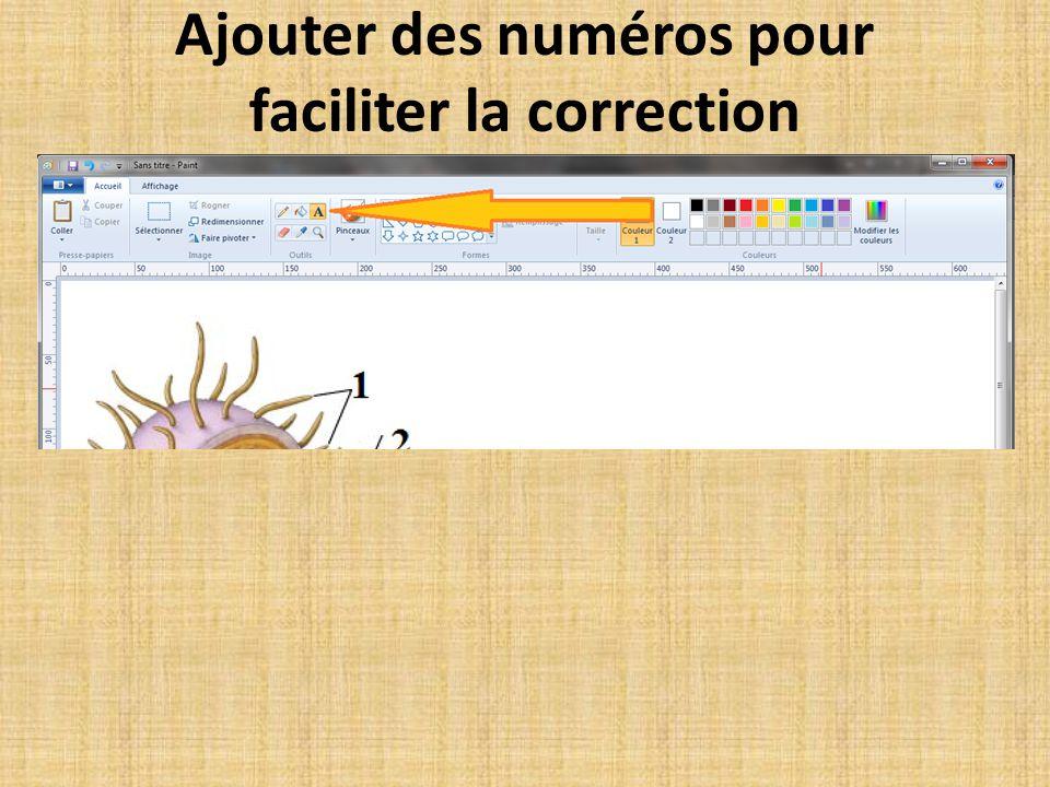 Ajouter des numéros pour faciliter la correction