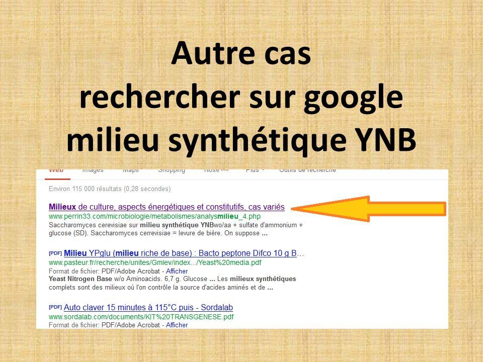 Autre cas rechercher sur google milieu synthétique YNB