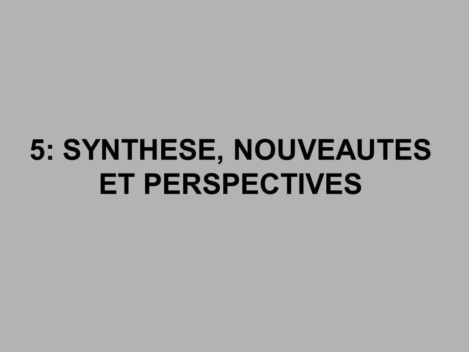 5: SYNTHESE, NOUVEAUTES ET PERSPECTIVES