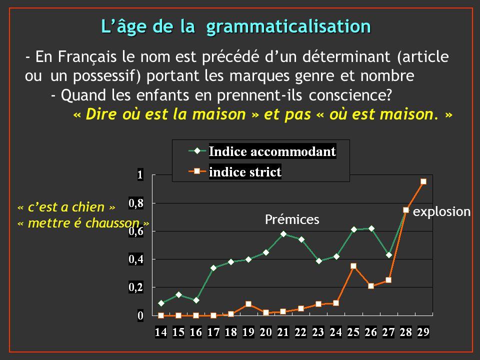 Lâge de la grammaticalisation - En Français le nom est précédé dun déterminant (article ou un possessif) portant les marques genre et nombre - Quand l