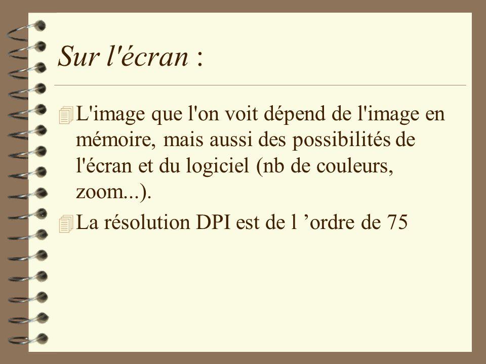 Sur l'écran : 4 L'image que l'on voit dépend de l'image en mémoire, mais aussi des possibilités de l'écran et du logiciel (nb de couleurs, zoom...). 4