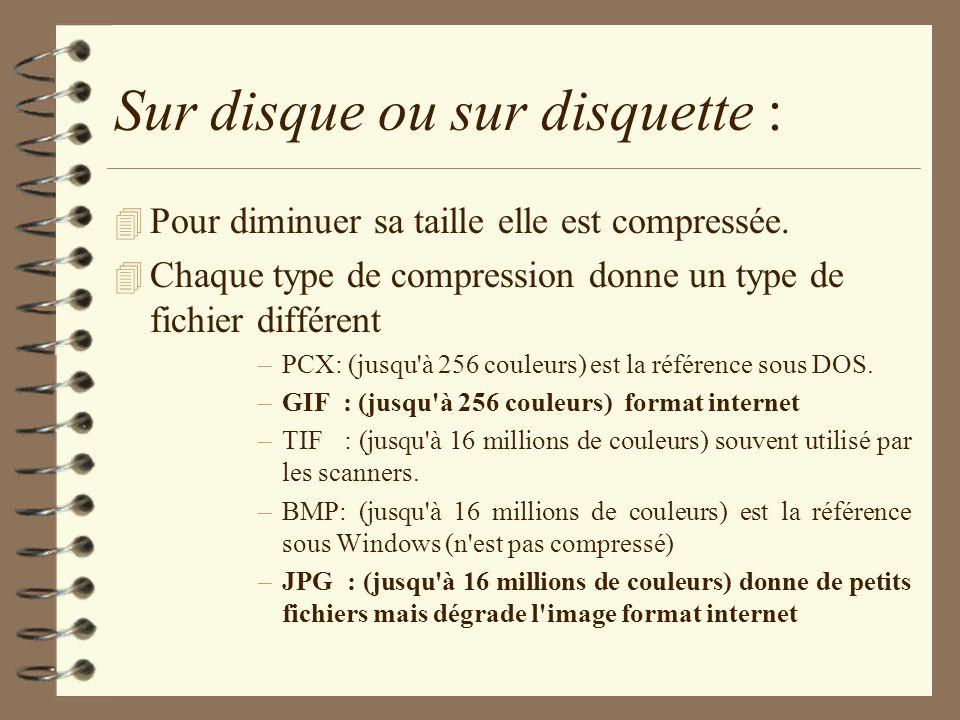 Sur disque ou sur disquette : 4 Pour diminuer sa taille elle est compressée. 4 Chaque type de compression donne un type de fichier différent –PCX: (ju