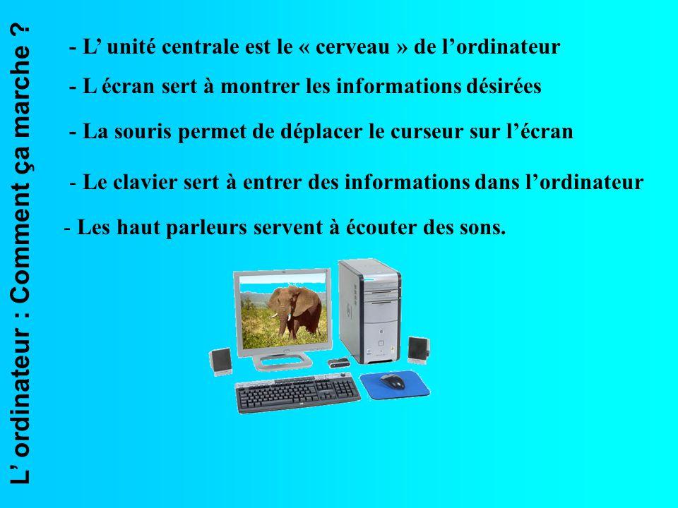 L ordinateur : Comment ça marche ? - L unité centrale est le « cerveau » de lordinateur - L écran sert à montrer les informations désirées - La souris
