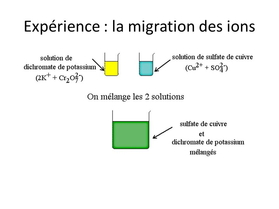 Expérience : la migration des ions