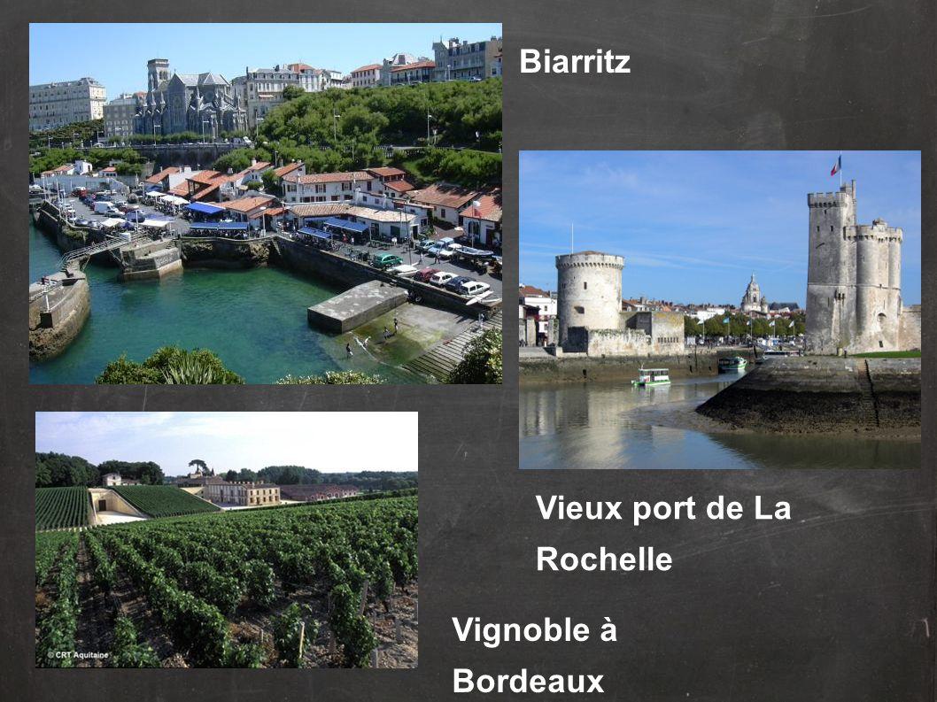 Vignoble à Bordeaux Biarritz Vieux port de La Rochelle