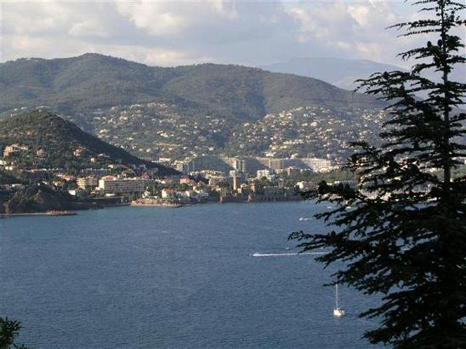 Lîle Saint Honorat est située au large de la baie de Cannes.