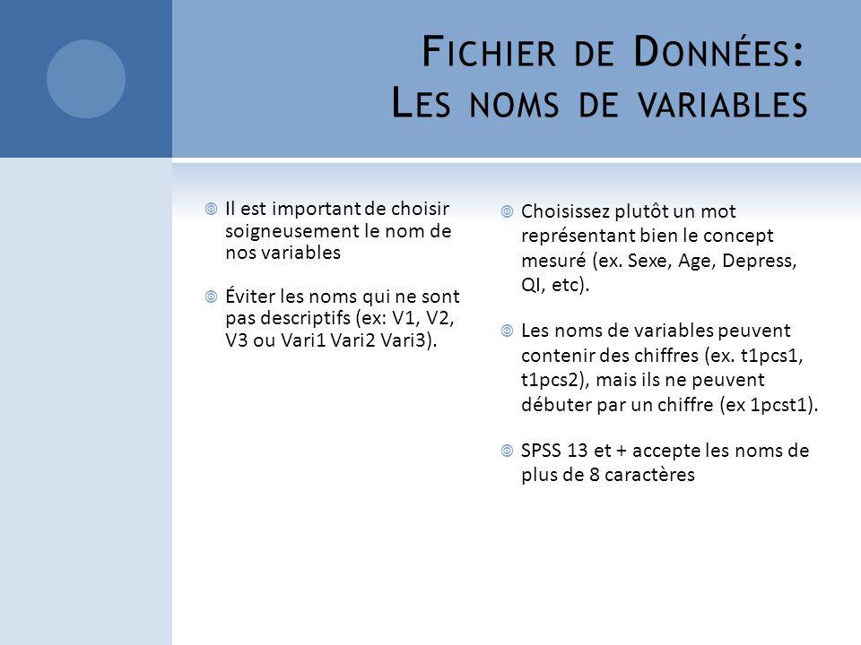 F ICHIER DE D ONNÉES : L ES NOMS DE VARIABLES Il est important de choisir soigneusement le nom de nos variables Éviter les noms qui ne sont pas descri