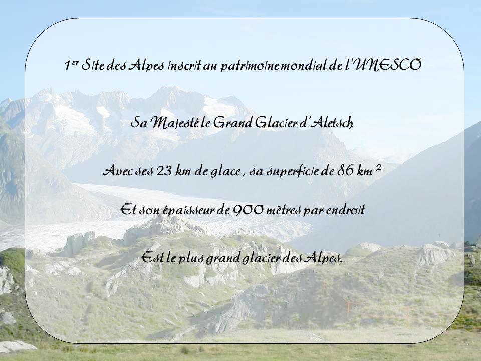 1 er Site des Alpes inscrit au patrimoine mondial de lUNESCO Sa Majesté le Grand Glacier dAletsch Avec ses 23 km de glace, sa superficie de 86 km 2 Et son épaisseur de 900 mètres par endroit Est le plus grand glacier des Alpes.