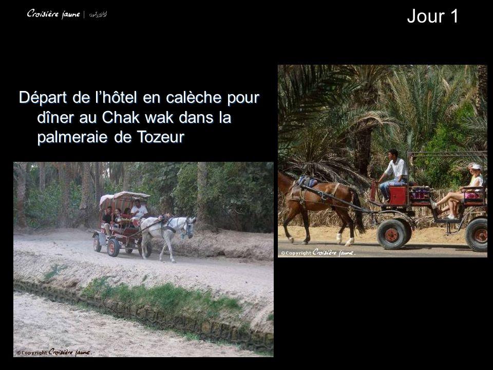 Départ de lhôtel en calèche pour dîner au Chak wak dans la palmeraie de Tozeur Jour 1