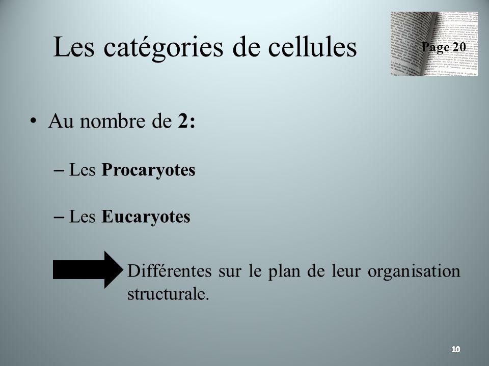 Les catégories de cellules Au nombre de 2: – Les Procaryotes – Les Eucaryotes Différentes sur le plan de leur organisation structurale. Page 20