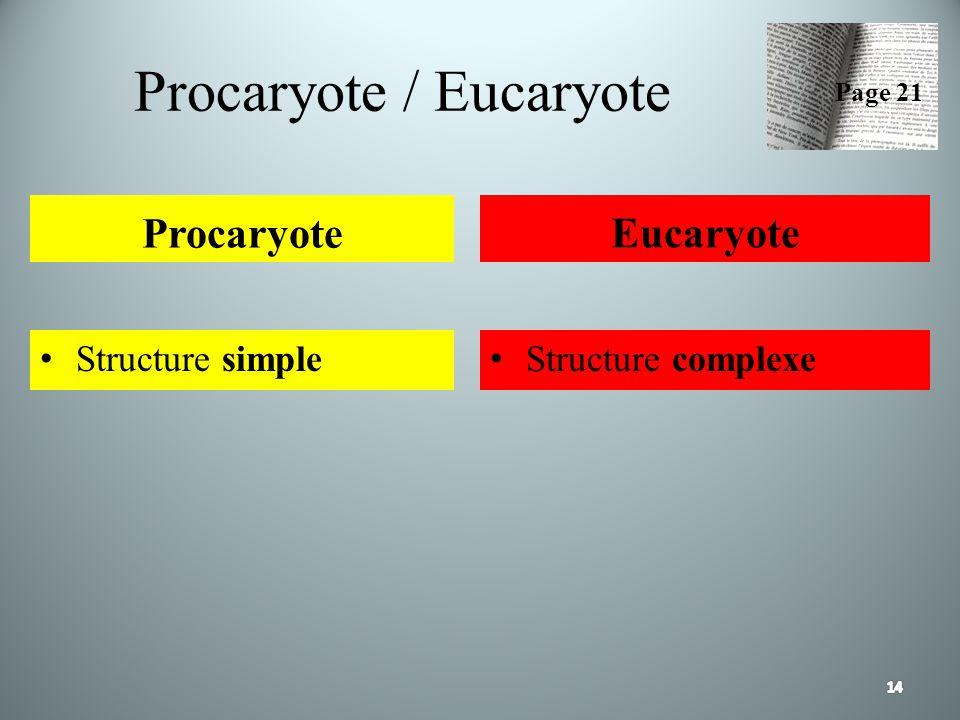 Procaryote / Eucaryote Procaryote Structure simple Eucaryote Structure complexe Page 21