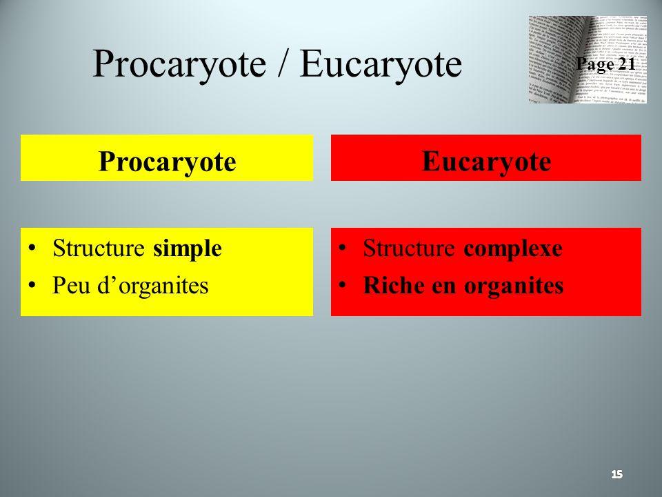 Procaryote / Eucaryote Procaryote Structure simple Peu dorganites Eucaryote Structure complexe Riche en organites Page 21