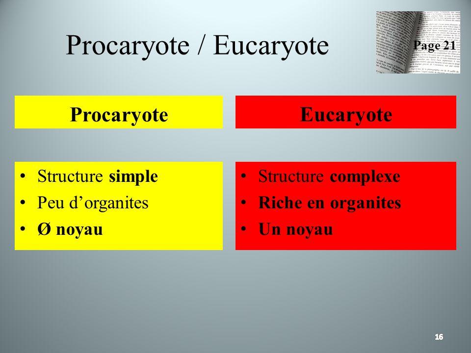 Procaryote / Eucaryote Procaryote Structure simple Peu dorganites Ø noyau Eucaryote Structure complexe Riche en organites Un noyau Page 21