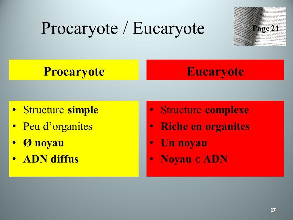 Procaryote / Eucaryote Procaryote Structure simple Peu dorganites Ø noyau ADN diffus Eucaryote Structure complexe Riche en organites Un noyau Noyau AD