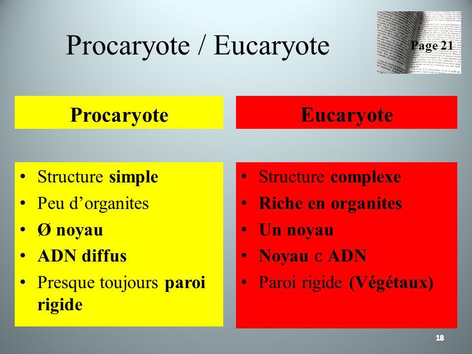 Procaryote / Eucaryote Procaryote Structure simple Peu dorganites Ø noyau ADN diffus Presque toujours paroi rigide Eucaryote Structure complexe Riche