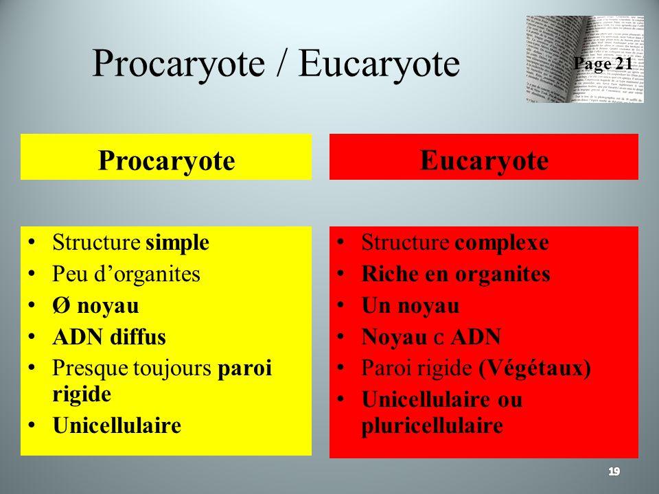 Procaryote / Eucaryote Procaryote Structure simple Peu dorganites Ø noyau ADN diffus Presque toujours paroi rigide Unicellulaire Eucaryote Structure c