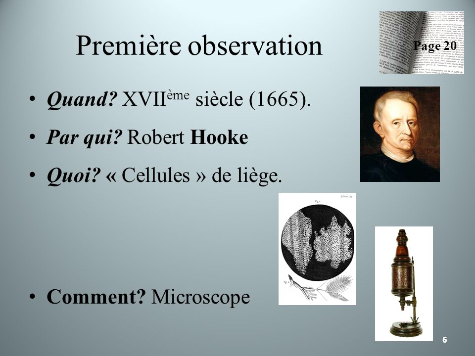 Première observation Quand? XVII ème siècle (1665). Par qui? Robert Hooke Quoi? « Cellules » de liège. Comment? Microscope Page 20