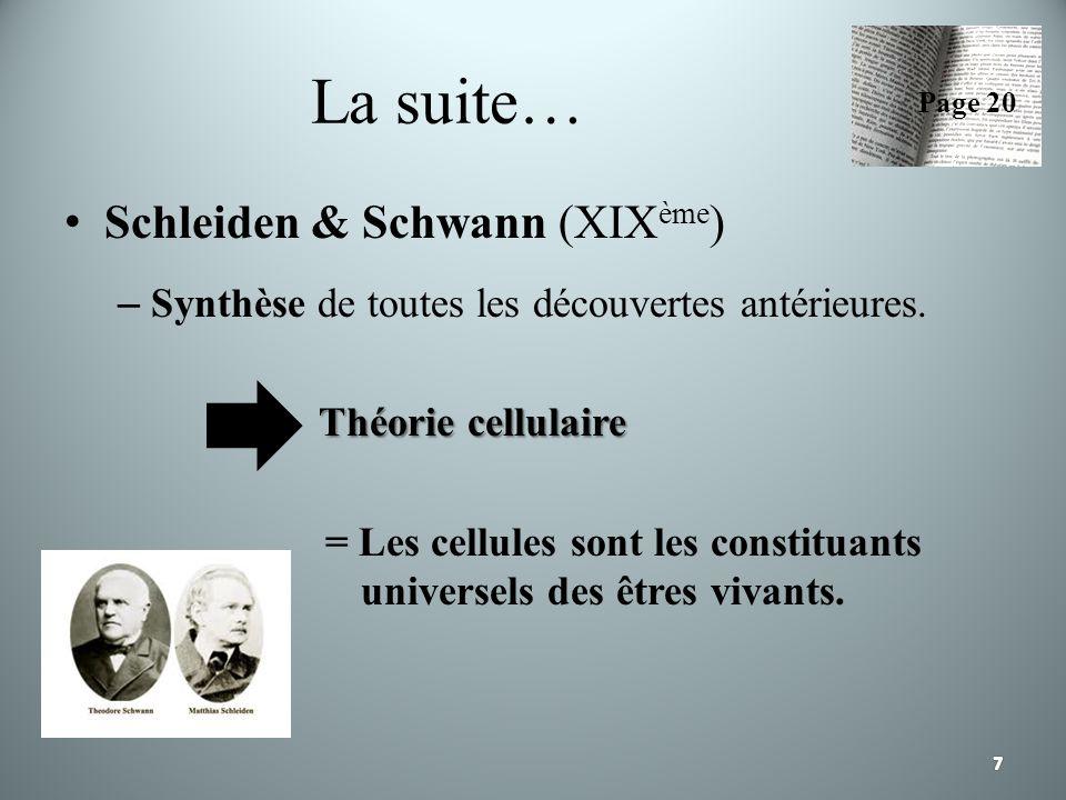 La suite… Schleiden & Schwann (XIX ème ) – Synthèse de toutes les découvertes antérieures. Théorie cellulaire = Les cellules sont les constituants uni