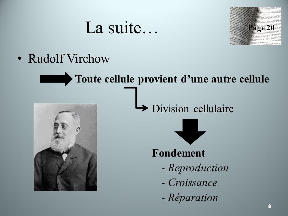 La suite… Rudolf Virchow Toute cellule provient dune autre cellule Division cellulaire Fondement - Reproduction - Croissance - Réparation Page 20
