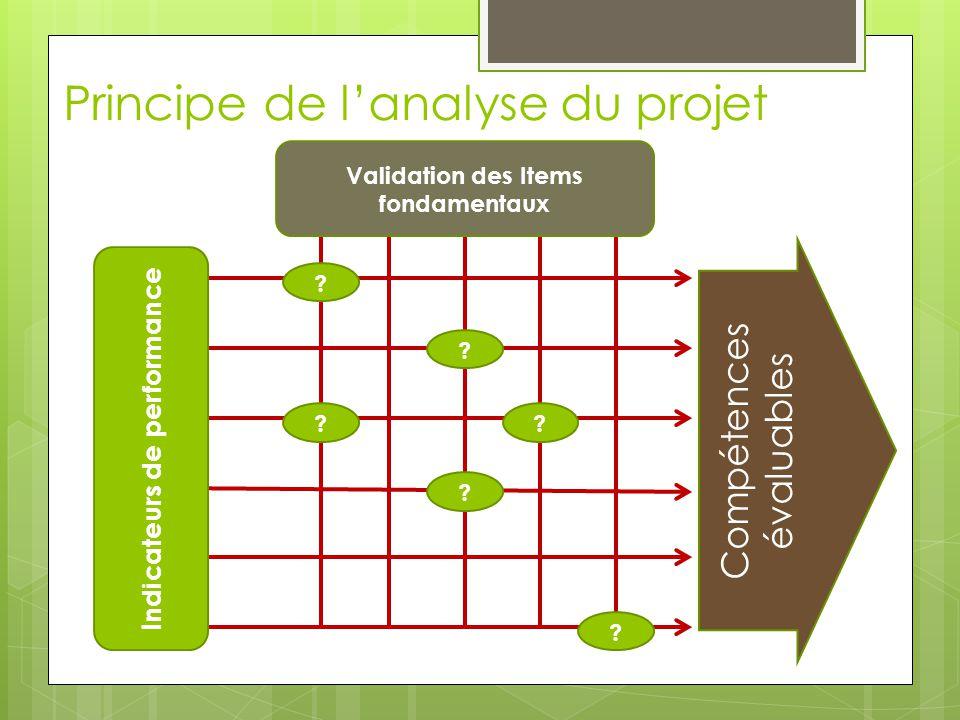 Principe de lanalyse du projet ? ? ? ? ? ? Compétences évaluables Validation des Items fondamentaux Indicateurs de performance