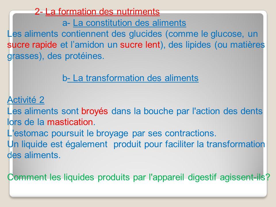 2- La formation des nutriments a- La constitution des aliments Les aliments contiennent des glucides (comme le glucose, un sucre rapide et lamidon un