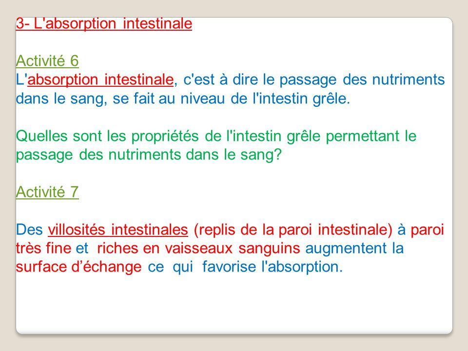 3- L'absorption intestinale Activité 6 L'absorption intestinale, c'est à dire le passage des nutriments dans le sang, se fait au niveau de l'intestin